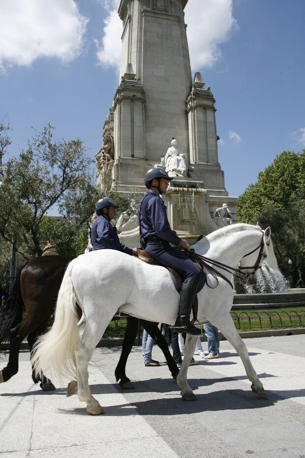 CAV Caballeria Madrid Polizei-Reiter 08