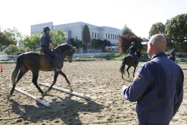 CAV Caballeria Madrid Polizei-Reiter 12