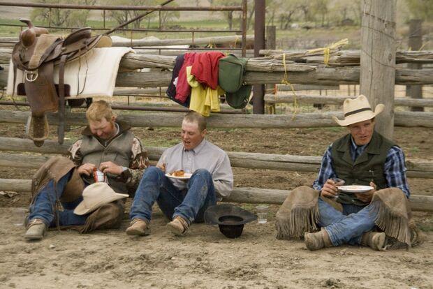CAV Cattle Drive Western Horsemanship Montana Rinder MS_09