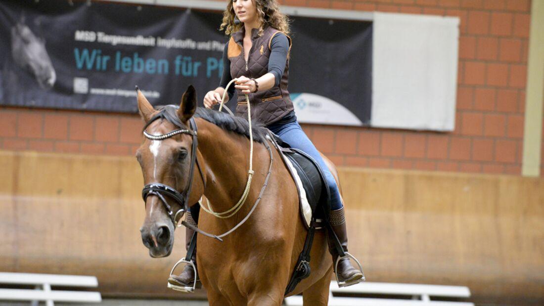 CAV-Cavallo-Academy-2014-1 (jpg)