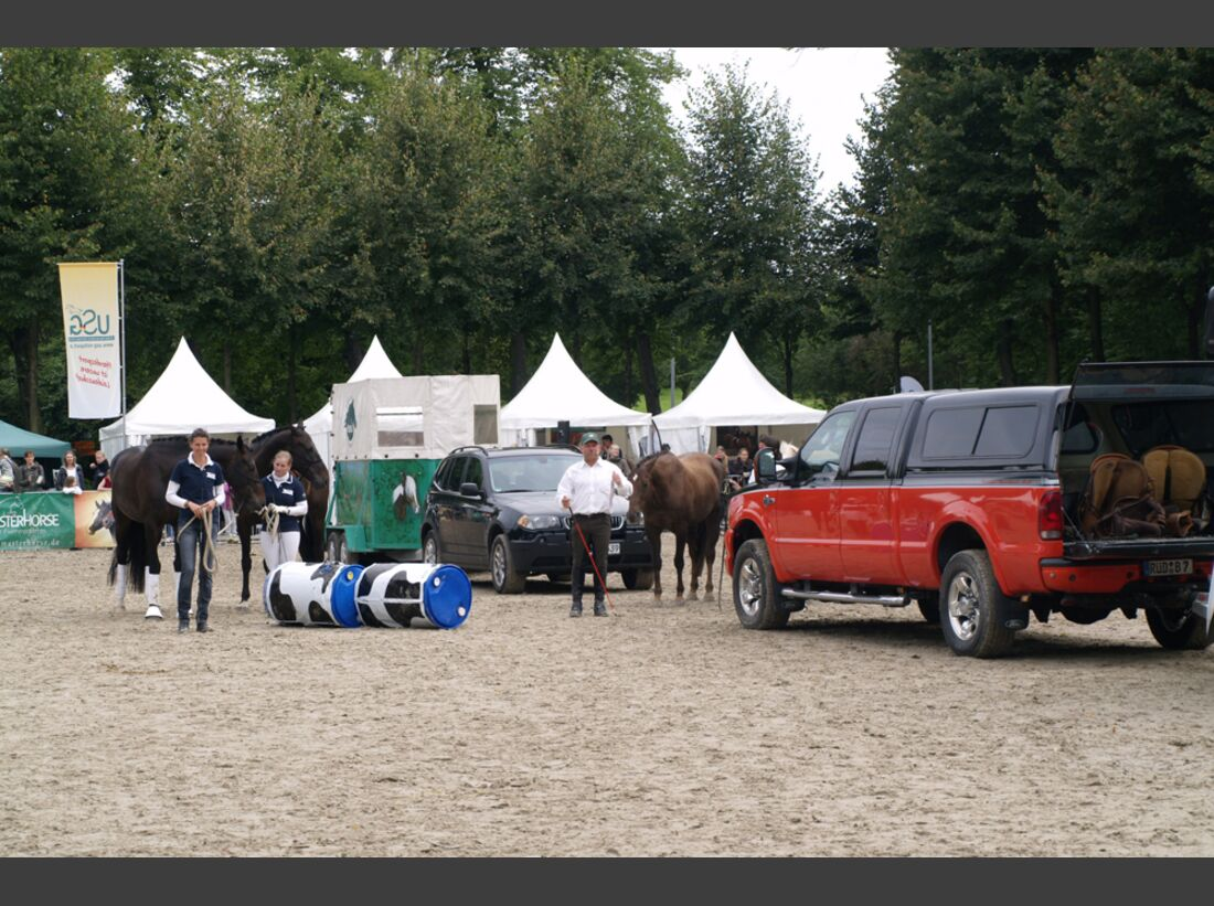 CAV-Cavallo-Academy-2014-25 (jpg)