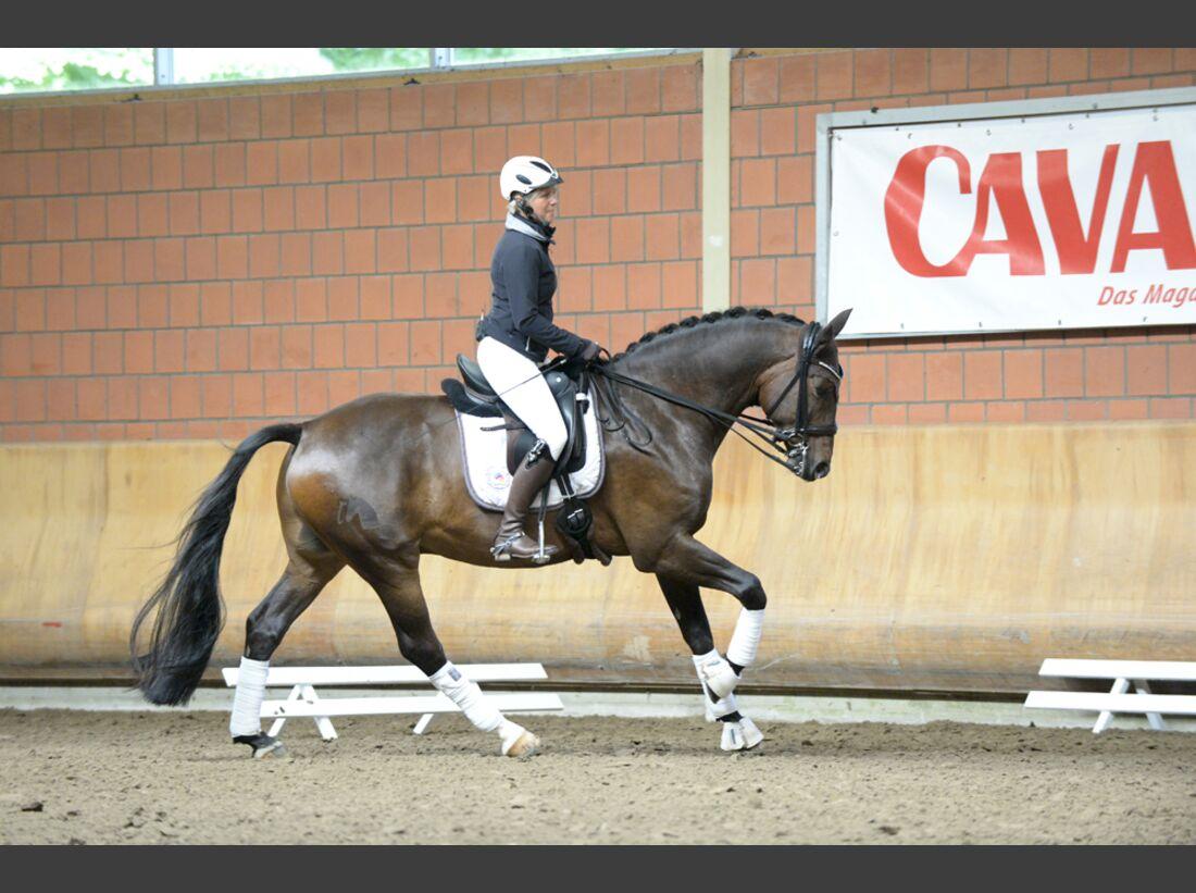 CAV-Cavallo-Academy-2014-28 (jpg)