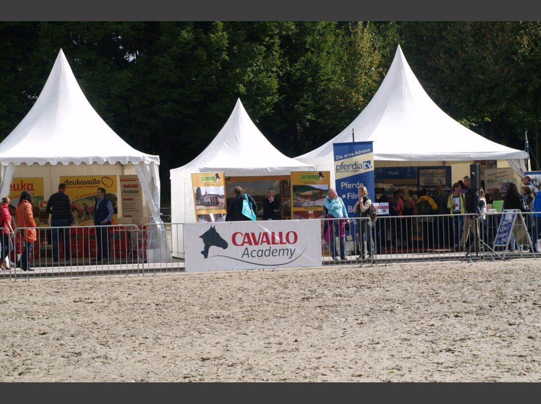 CAV-Cavallo-Academy-2014-3 (jpg)