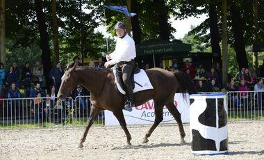 CAV Cavallo Academy 2014 Parelli Team Ralf Heil