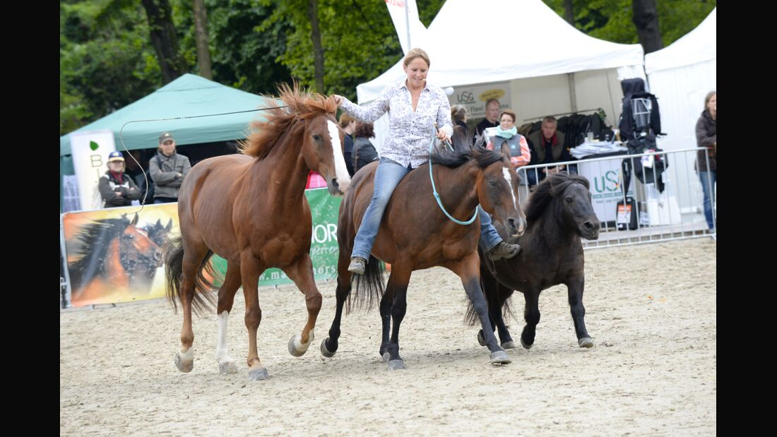 CAV Cavallo Academy 2014 Show Claudia Miller