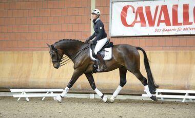 CAV Cavallo Academy 2014 Uta Gräf
