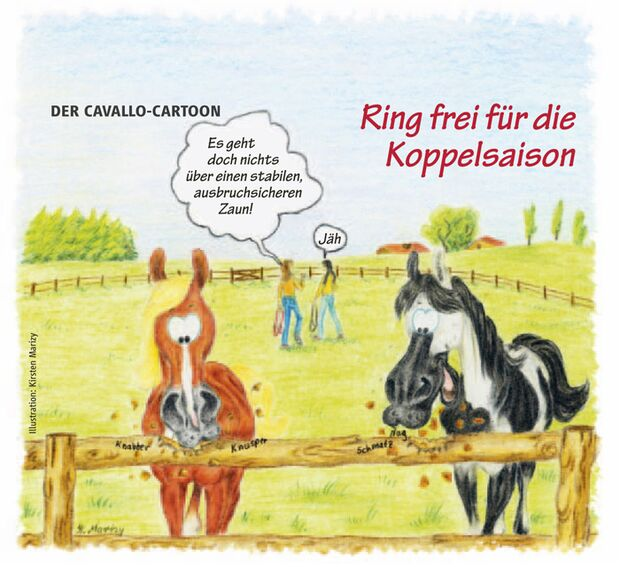 CAV Cavallo-Cartoon Kirsten Marizy Cartoon Karikatur 25