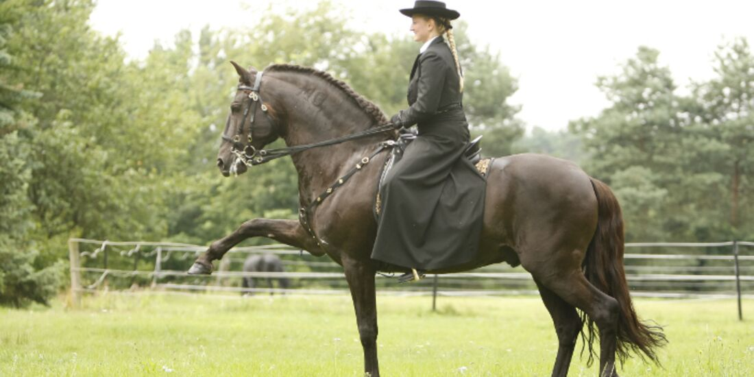 CAV Cavallo Cup Irene Raab-Hinrichs Dressur Barock