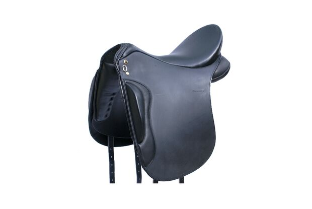 CAV Cavallo Trophy 2014 Amazona Dressage Premium