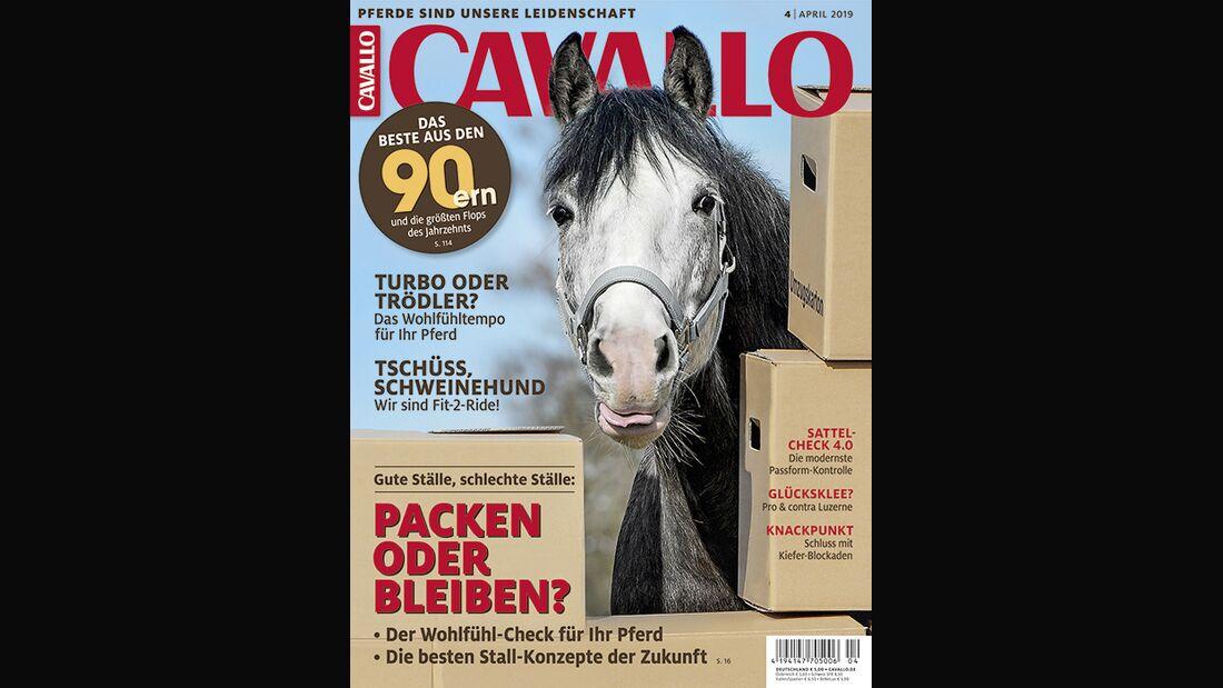 CAV Cover 4 2019 April Titel