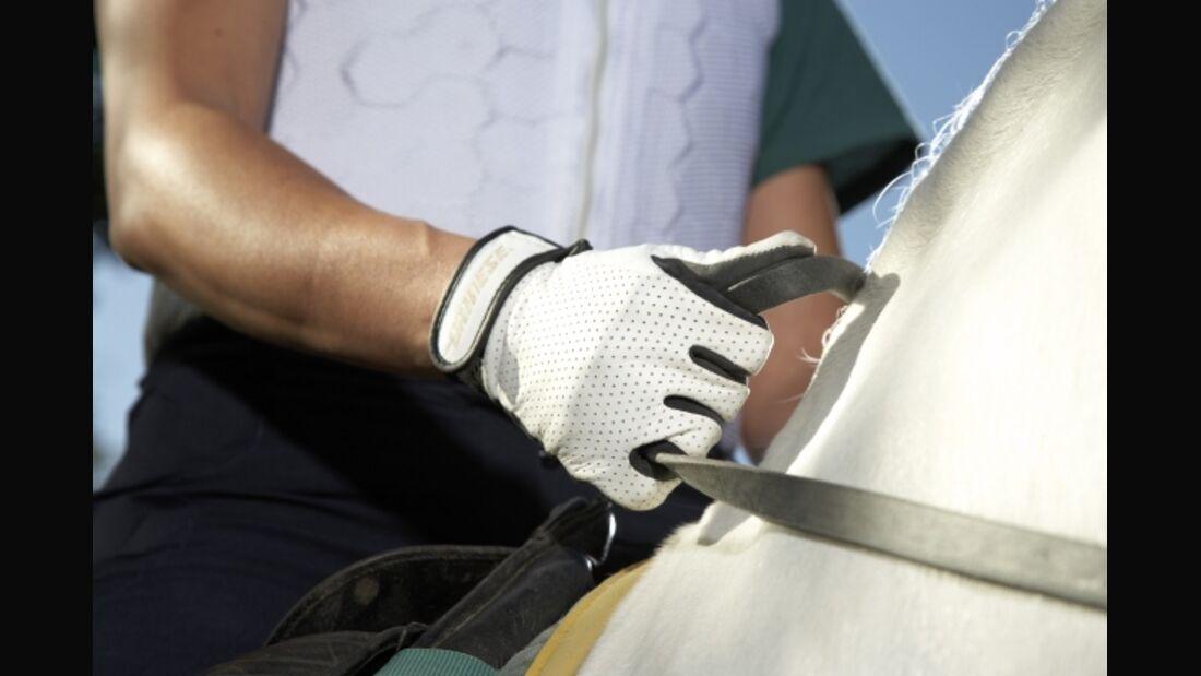 CAV Dainese Handschuhe Reithandschuhe Protektoren