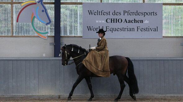 CAV Damensattel Aachen 2012 - 1