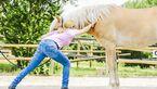 CAV Dehnen Pferd 4