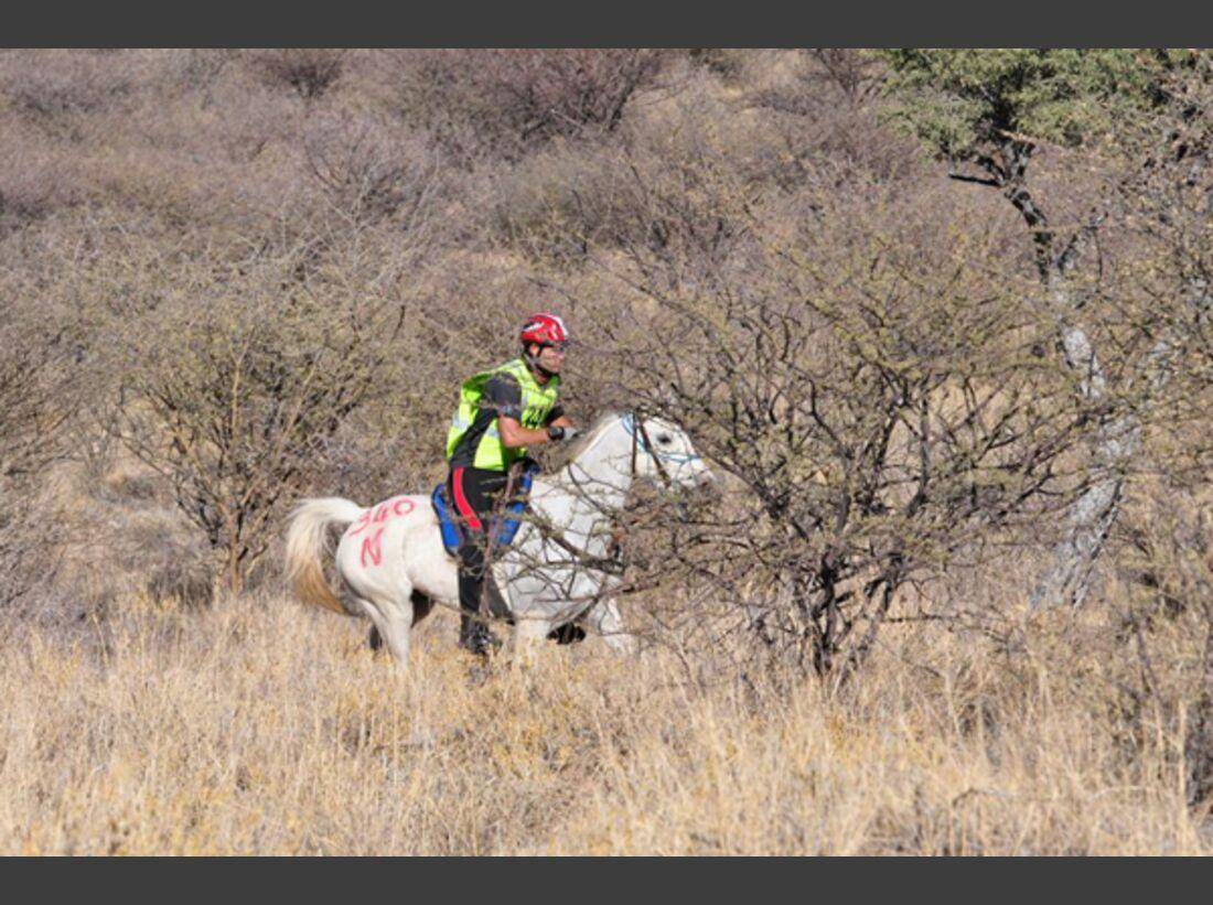CAV-Distanzreiten-Namibia-06