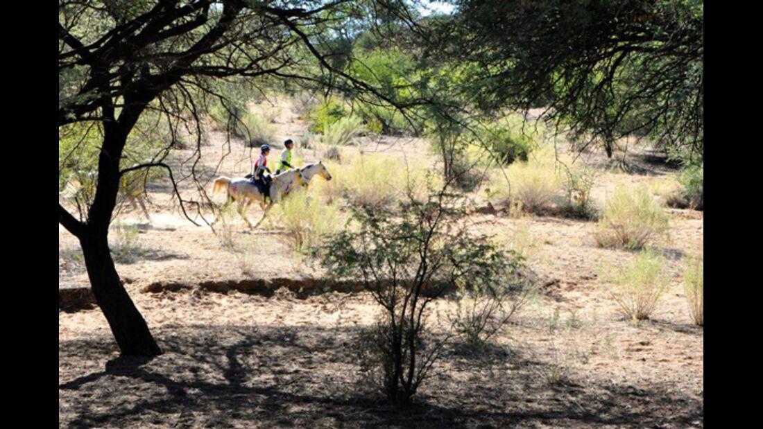 CAV-Distanzreiten-Namibia-13