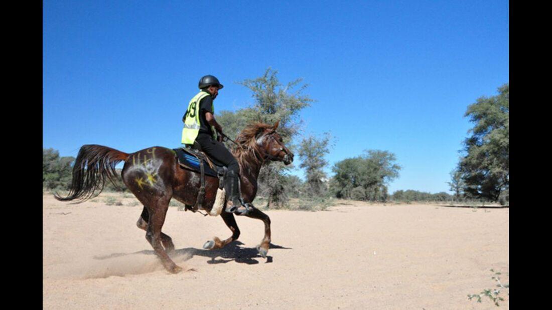 CAV-Distanzreiten-Namibia-28