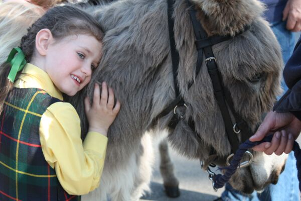 CAV Donkey Sanctuary 14