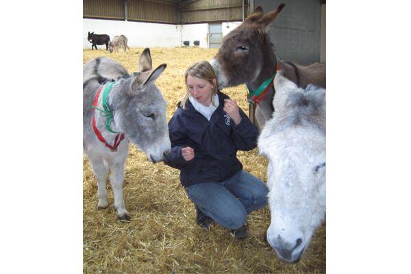 CAV Donkey Sanctuary 4