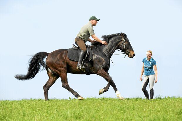 CAV Dressur Horsemanship 7
