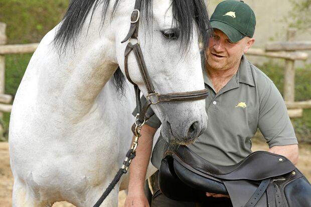 CAV Dressur Horsemanship 9