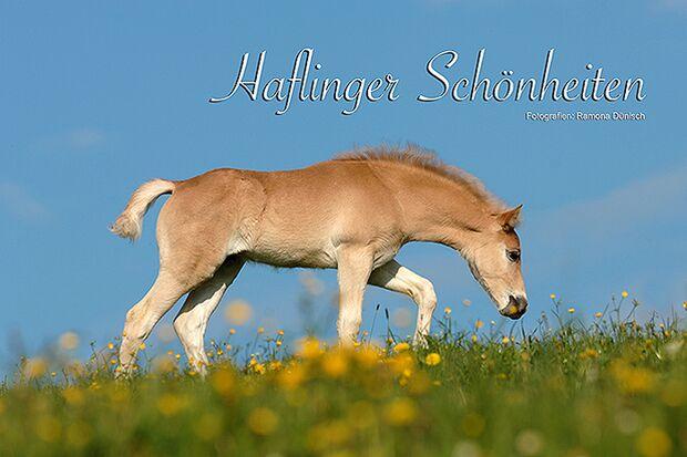 CAV Dünisch Kalender 2014 - 4