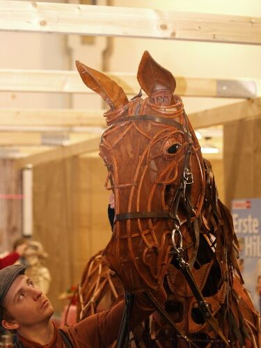 CAV Equitana 2013 Gefährten Warhorse Musical Joey