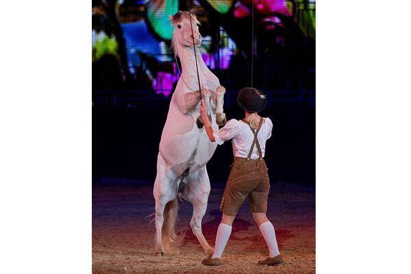 CAV Equitana 2013 Show 6