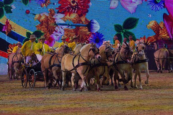 CAV Equitana 2013 Show 9