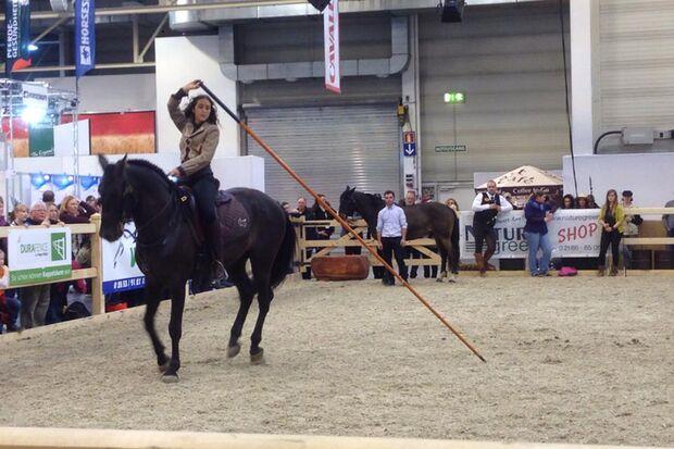 CAV Equitana 2015 Cavallo 4