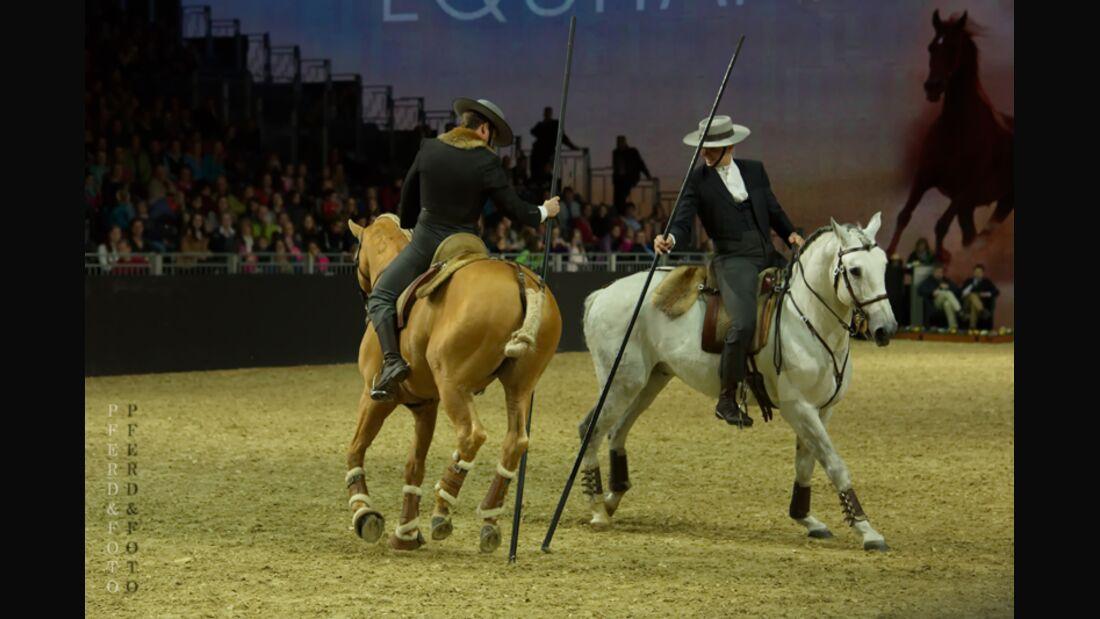 CAV Equitana 2015 Thomas Molitor 2