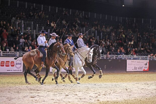 CAV Equitana 2019 Thementage