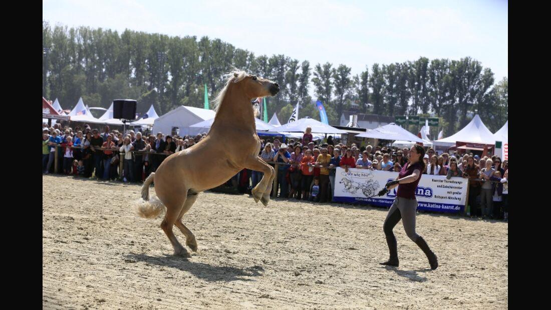CAV Equitana Open Air Cavallo Cup Finale Neuss 2012