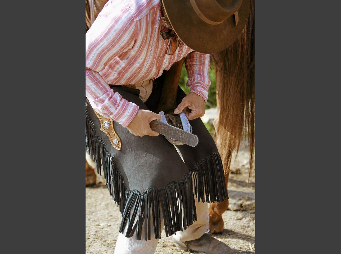 CAV Ernst-Peter Frey Sugarman Horsemanship 09