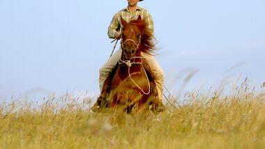 CAV Ernst-Peter Frey Sugarman Horsemanship 10