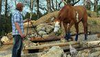 CAV Extreme Trail Hammerberg 4
