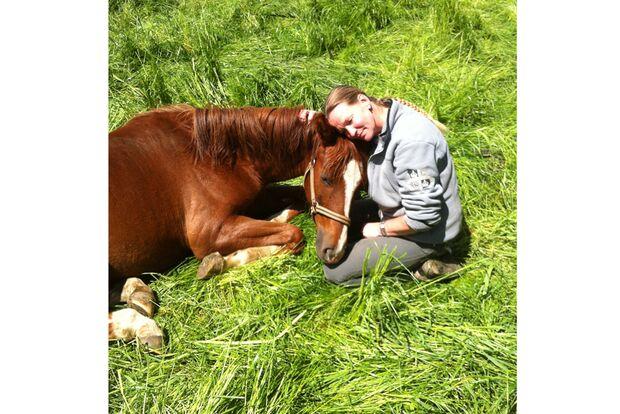 CAV Fan-Pferde A Amira Ilona Hahn