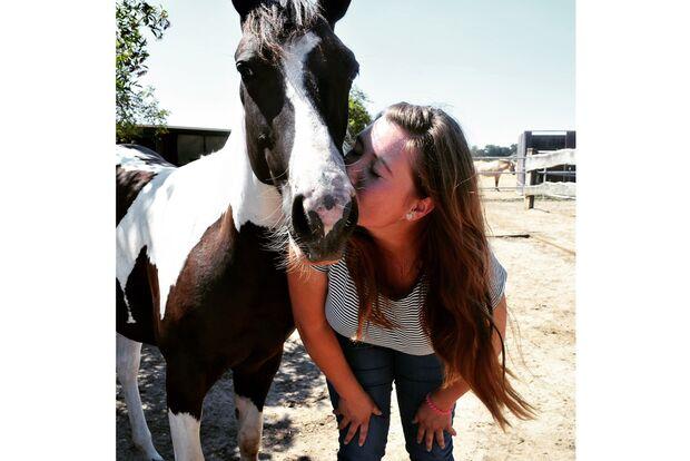 CAV Fan-Pferde AJB Docs Lil Magic Lisa Schiller