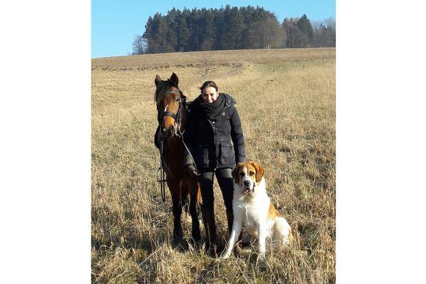 CAV Fan-Pferde Benny Blue Kathrin Harms-Hirche