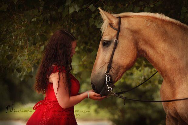 CAV Fan-Pferde Bolero Julia Laps