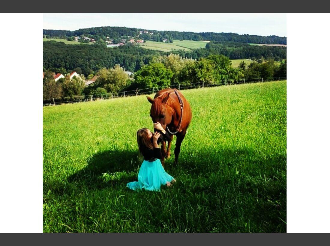 CAV Fan-Pferde Joy Nicole Griesser