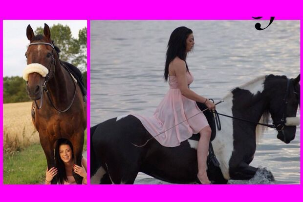 CAV Fan-Pferde Le Filou und Eddy