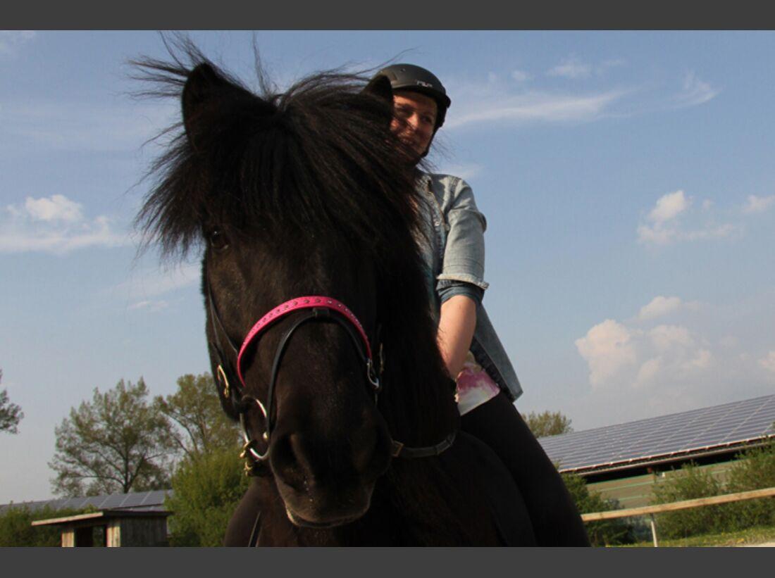 CAV-Fan-Pferde-Leseraktion-2013-Gaukur (JPG)