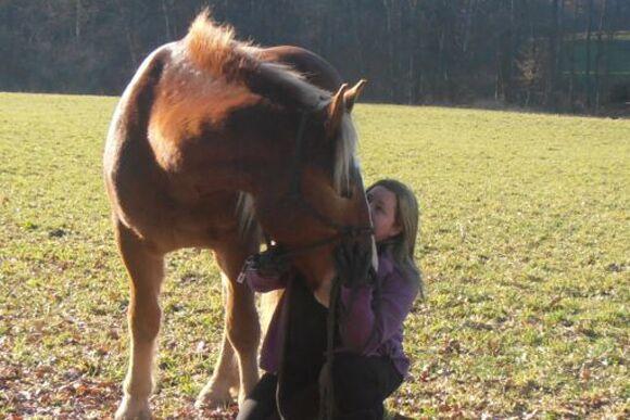 CAV-Fan-Pferde-Leseraktion-2013-Karin (jpg)