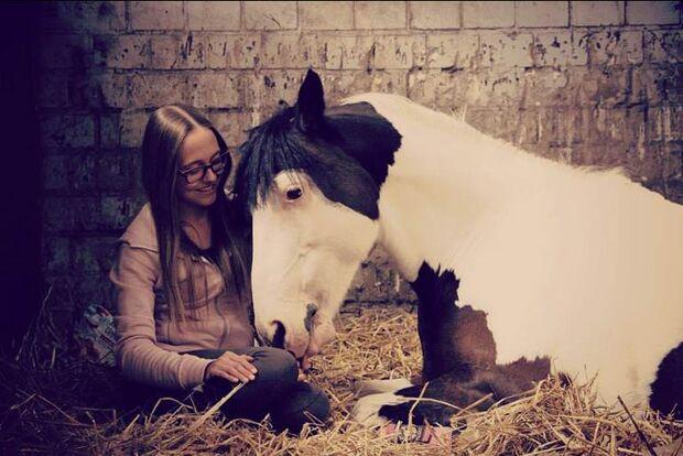 CAV-Fan-Pferde-Leseraktion-2013-Lotti (jpg)