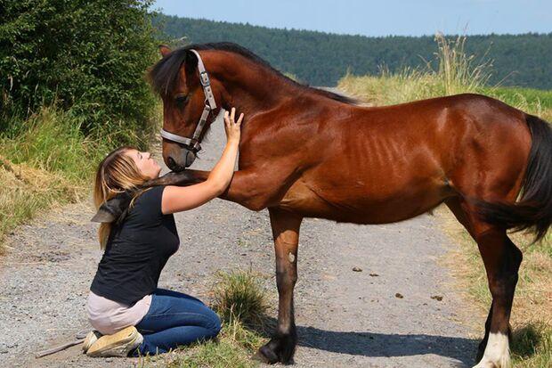 CAV-Fan-Pferde-Leseraktion-2013-Rubina (jpg)