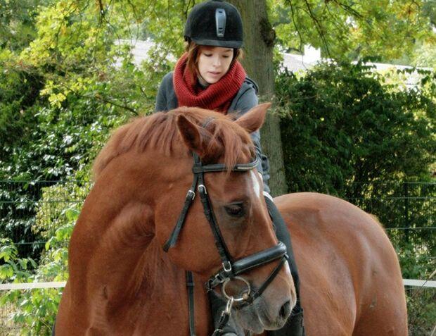 CAV-Fan-Pferde-Leseraktion-2013-Rubinero (jpg)