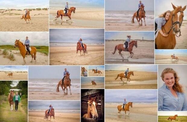 CAV-Fan-Pferde-Leseraktion-2013-Rufus_2 (jpg)