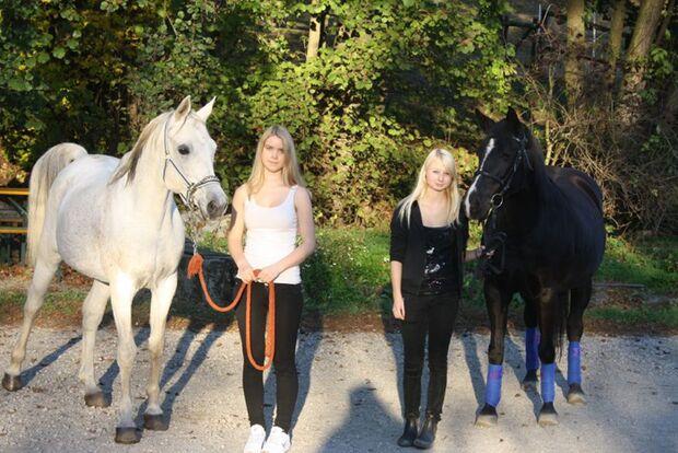 CAV-Fan-Pferde-Leseraktion-2013-Shah (jpg)