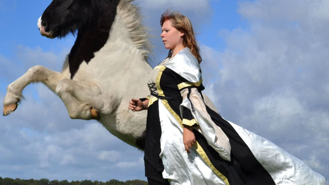 CAV-Fan-Pferde-Leseraktion-2013-Skjoni (jpg)