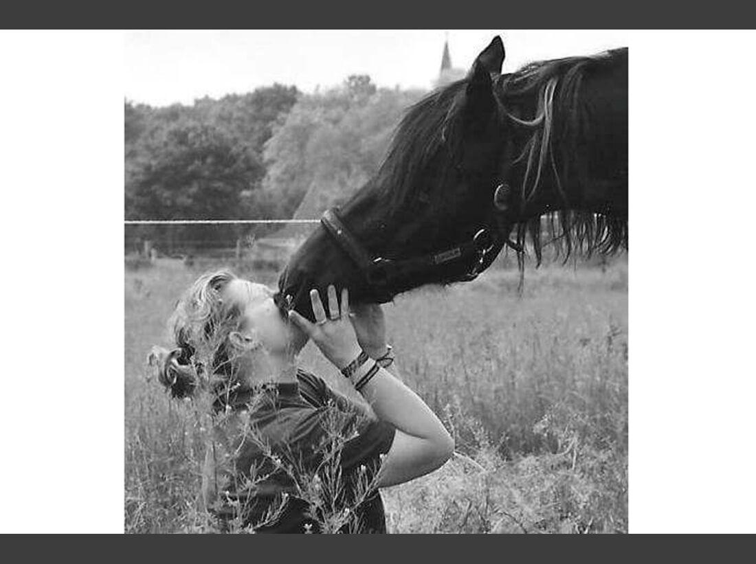 CAV Fan-Pferde Naddel Theresa Porzucek